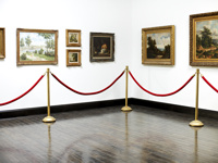 Atitvėrimo sistema muziejams, eksponatams, paveikslams.