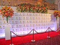 Foto sienelė su LED apšvietimu, gėlių puokštėmis ir virviniais atitvarais.