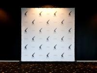 Gimtadienio foto siena Vingio kino teatre.